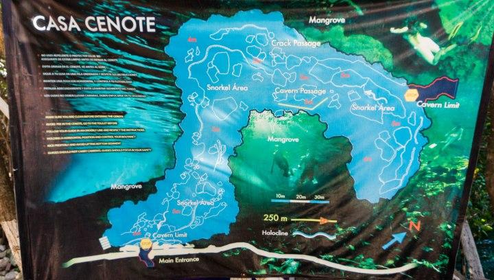 Cenote_Manatis_Übersicht