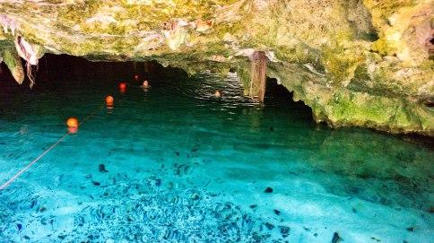 Grand Cenote_Tulum_02