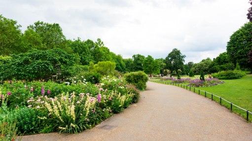 Hyde Park_Rosengarten