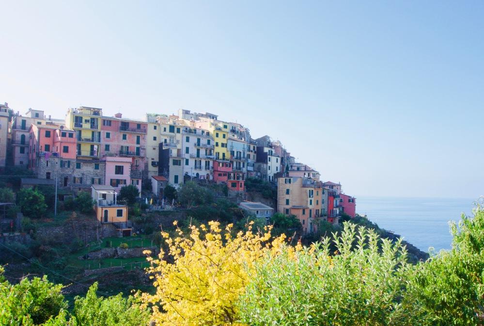Corniglia_Bunte Häuser - 1