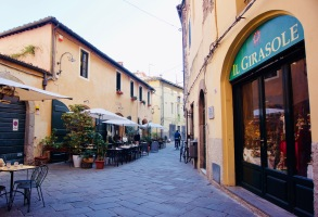 Toskana_Lucca_Girasole - 1