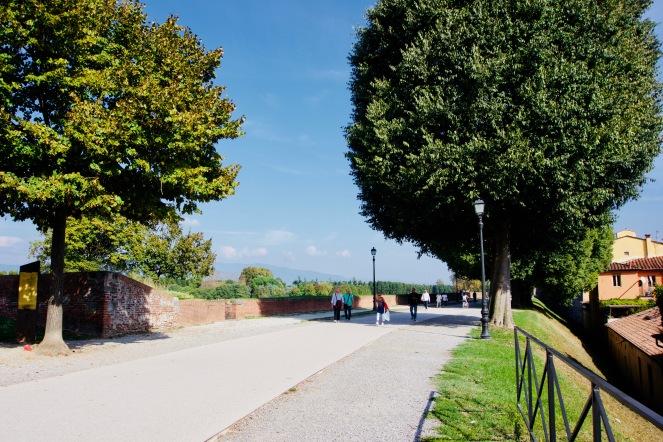 Toskana_Lucca_Stadtmauer - 1