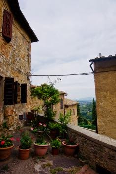 Toskana_San Gimignano_Aussicht_Pflanzen - 1