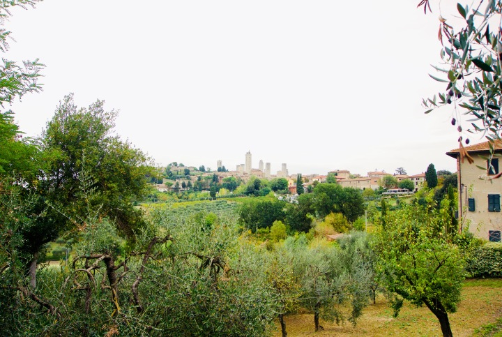 Toskana_San Gimignano_Fernblick - 1