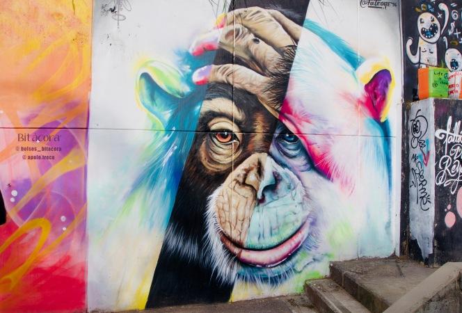 Kolumbien_Medellin_Street Art - 1