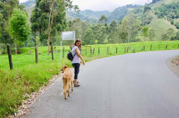 Kolumbien_Salento_Wanderung_Hund - 1