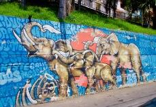 Kolumbien_Medellin_Comuna13_Streetart_Elefanten1 - 1