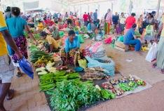 Dambulla_Lokaler Markt3 - 1