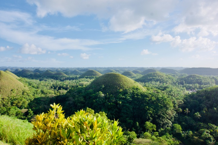 Bohol: Meine Highlights!